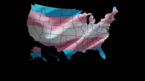 The Business Leaders Guide to Transgender Equality in the US